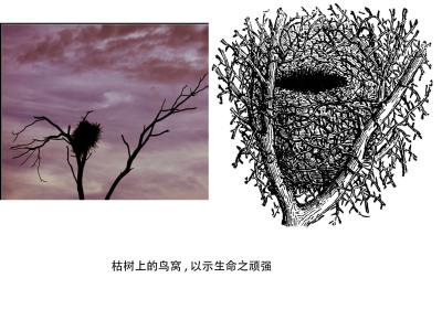 枯树上的鸟窝