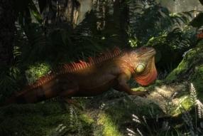 《Lizard》Octane for Cinema4d