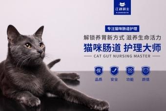 banner-江湖萌主 猫咪肠道护理大师